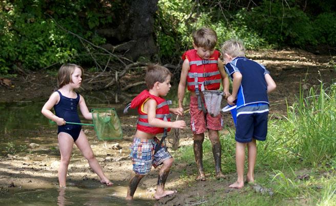 Catching Tadpoles