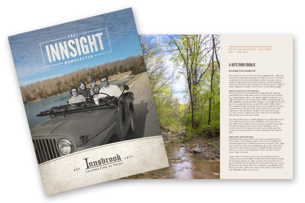 Innsight Newsletter Preview