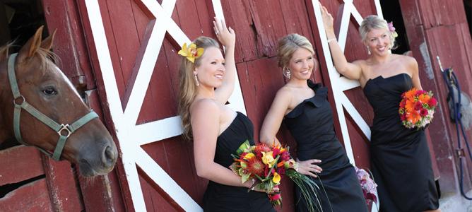 St Louis Best Bridal