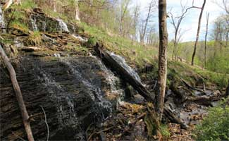 Tyrolean Trail