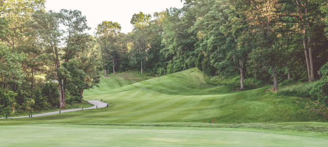 Rolling Hills of Hole 14